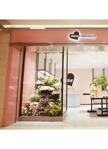 开启浪漫时光 love roseonly全球首家专卖店盛大开业