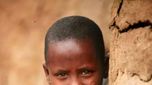 Get江一燕非洲摄影教程 只需一部华为P30 Pro就够了