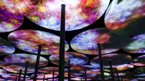 免费打卡全球火热的teamLab艺术展!nova星人主题日今日开启