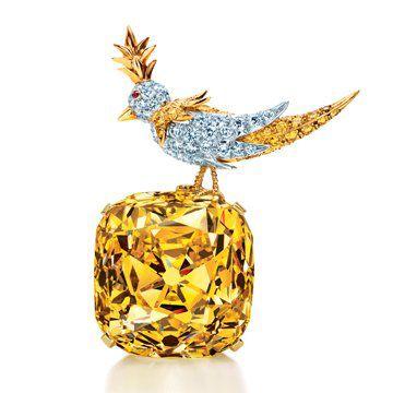 石上鸟 Diamond黄钻胸针